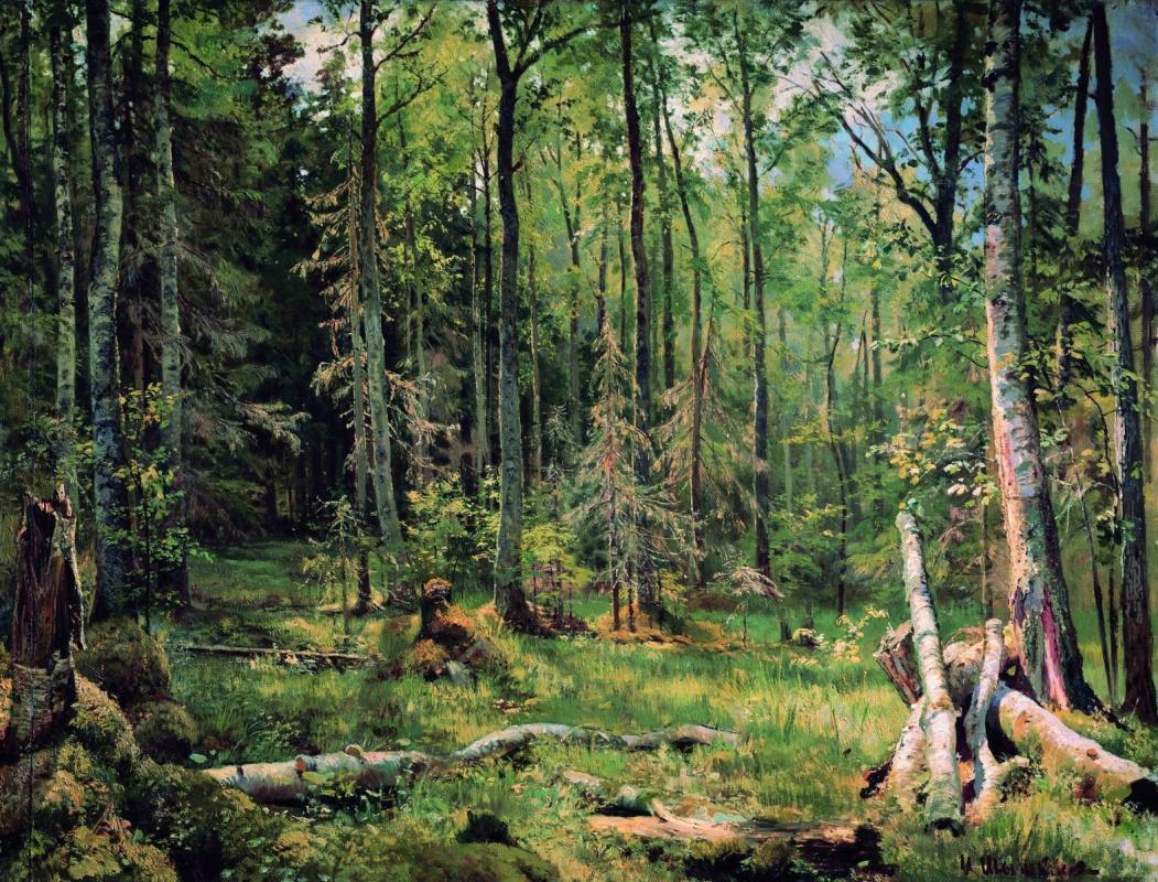 Иван Иванович Шишкин. Смешанный лес (Шмецк близ Нарвы)