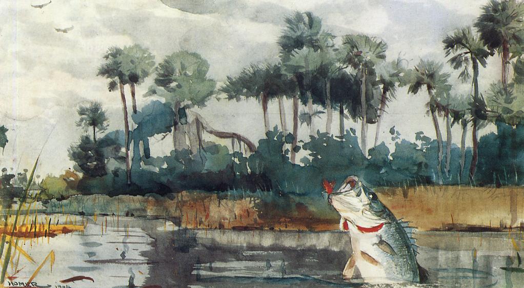 Winslow Homer. Black bass, Florida