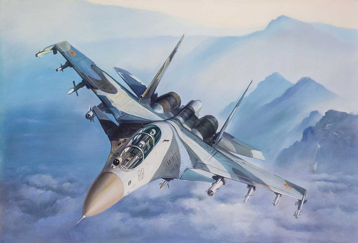 Savely Kamsky. Самолет Су-35. Покоряя небо