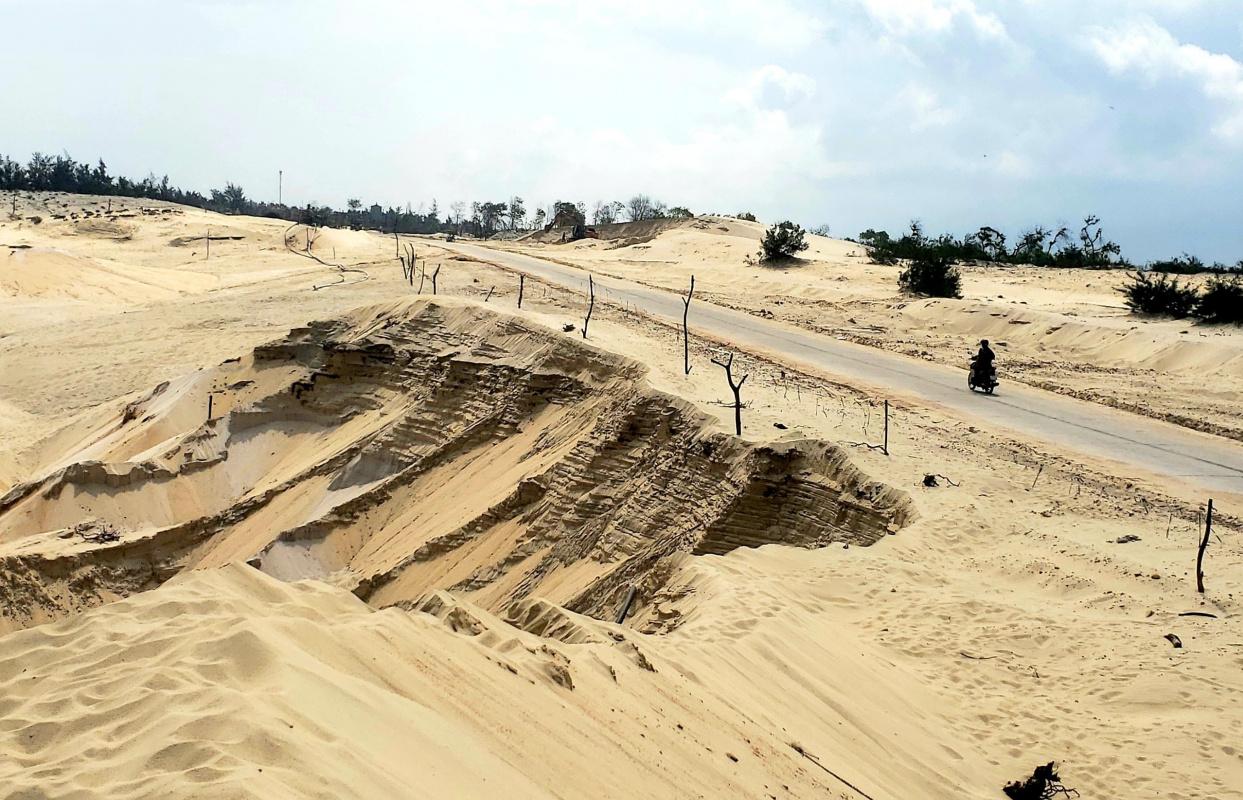 Khanh Linh. Golden Desert
