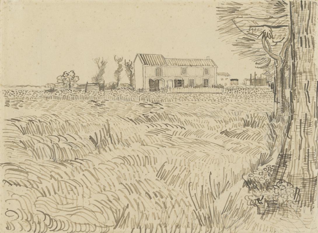 Винсент Ван Гог. Ферма в пшеничном поле