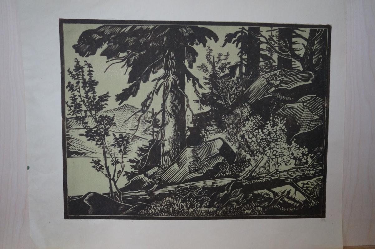 Ivan Alexandrovich Kuznetsov. Landscape
