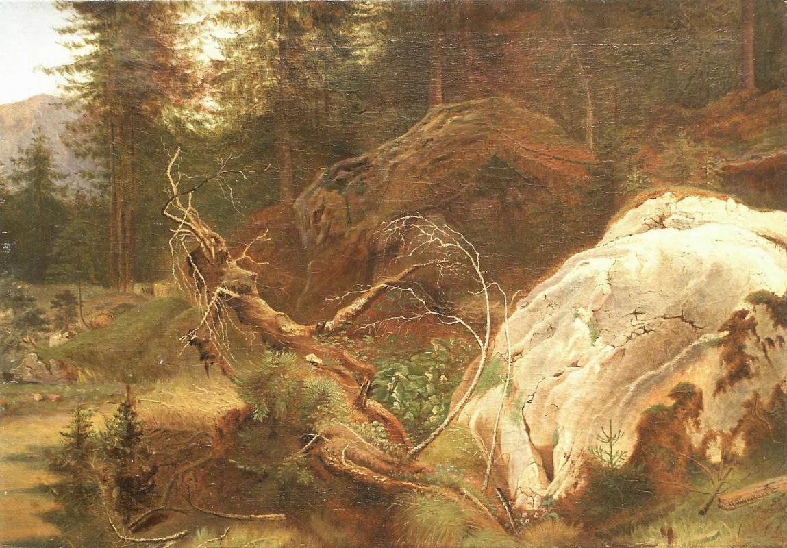 Иван Иванович Шишкин. Камни в лесу