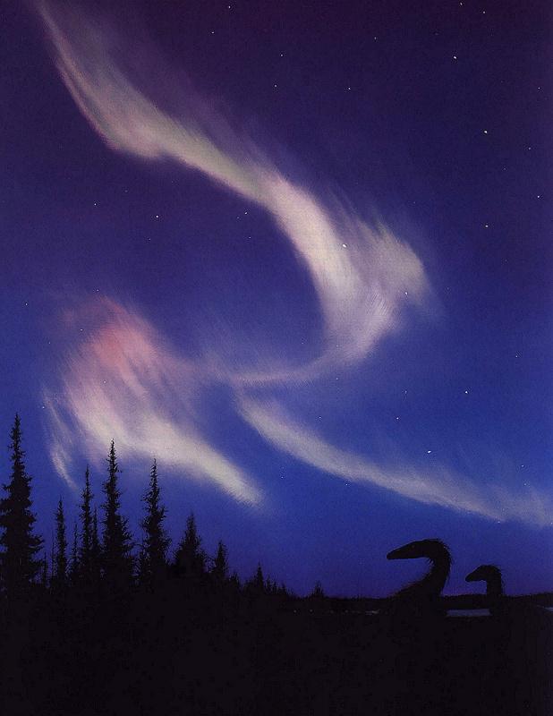 Лэрри Фелдер. Ночное небо