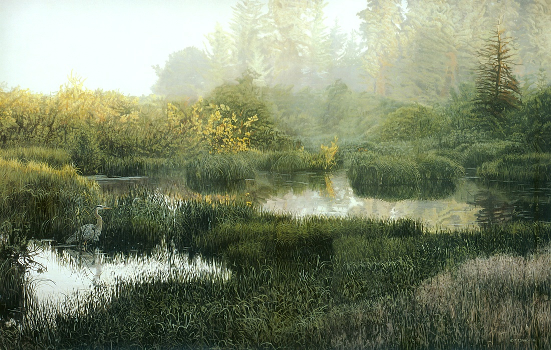 Terry Isaac. Morning landscape