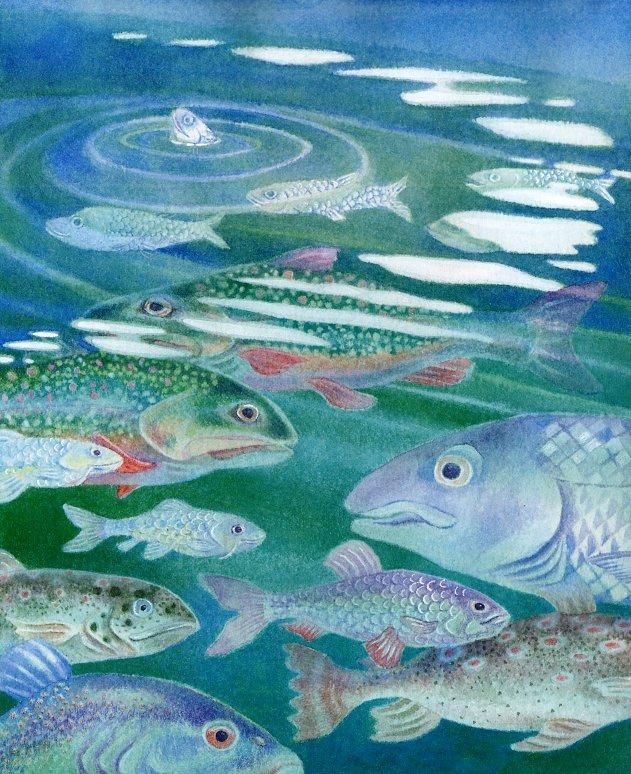 Терил Евремер. Рыбы
