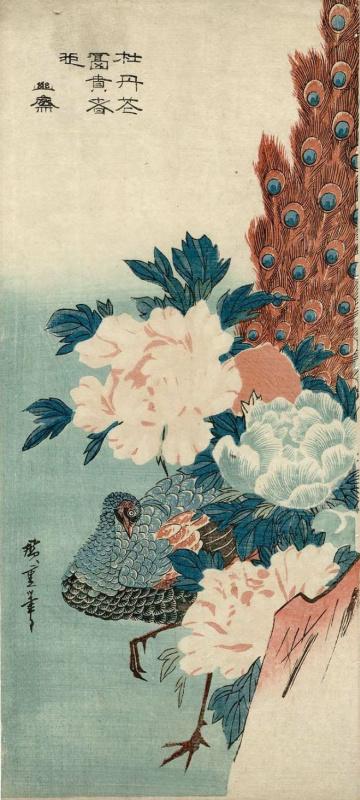 Utagawa Hiroshige. Peacock hiding behind a rock and flowering peonies