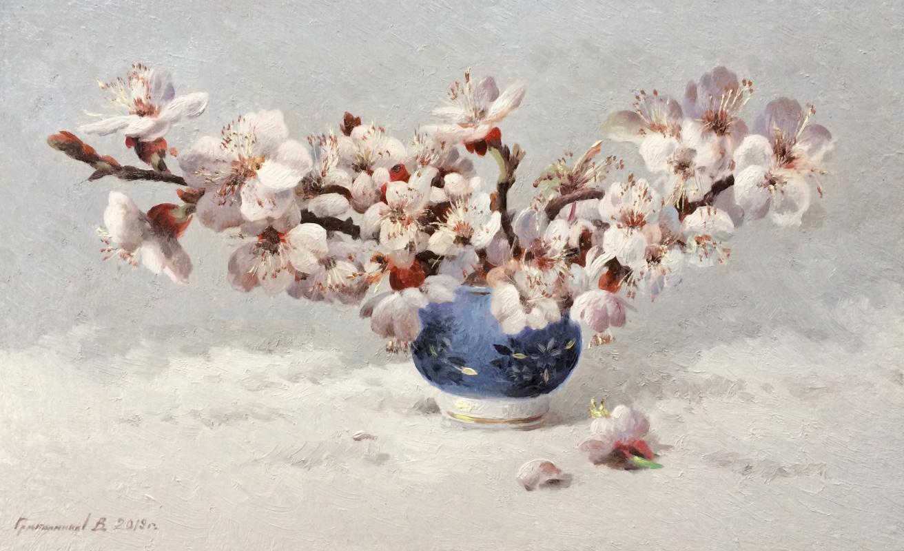 Vasily Ivanovich Gribennikov. Apple tree flowers