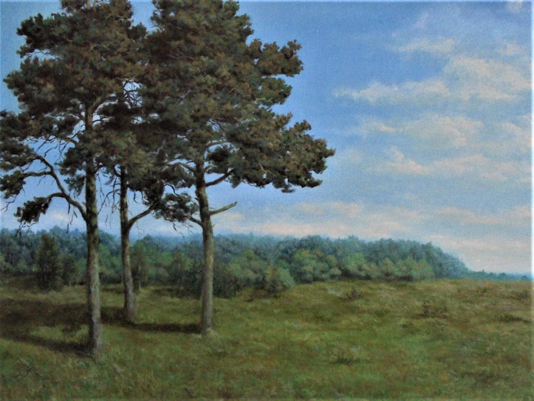 Vadim Olegovich Maslov. Three Pines