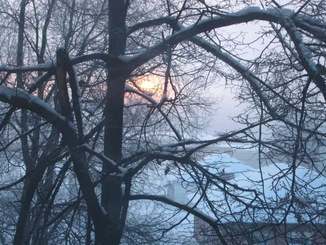 Alexey Grishankov (Alegri). Winter sunrise