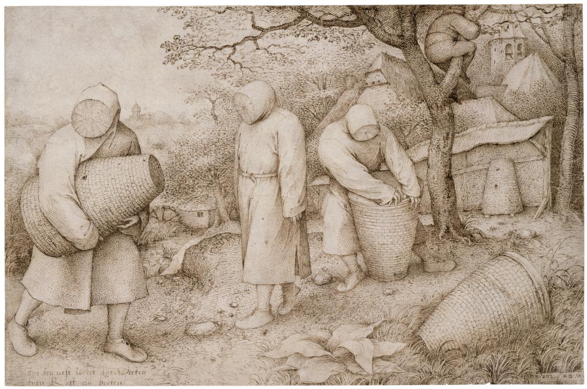 Pieter Bruegel The Elder. The Beekeepers and the Birdnester