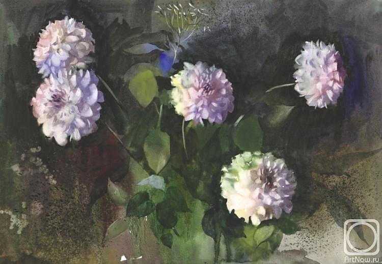 Alexander Karpan. White dahlias