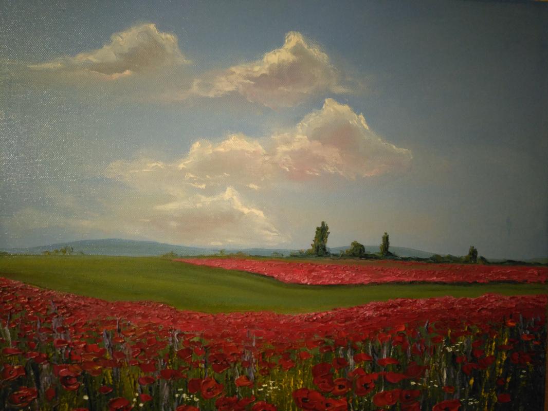 Ekaterina Evgenievna Ushakova. Poppy field