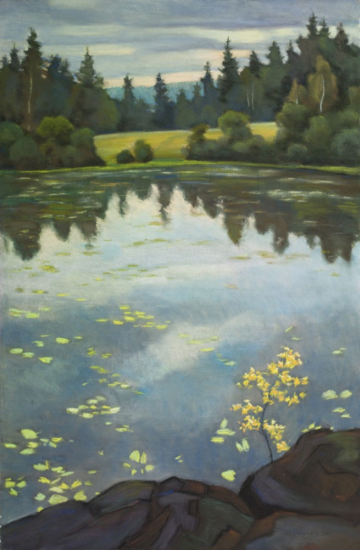 Denis Vladimirovich Gavrilov. Lake Lepestkami