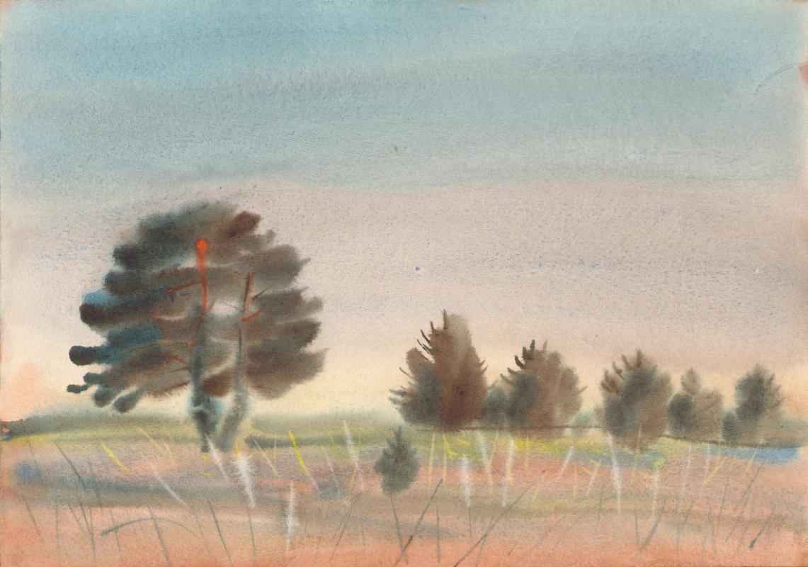 Vyacheslav Kryzhanovsky. Pines in the meadow