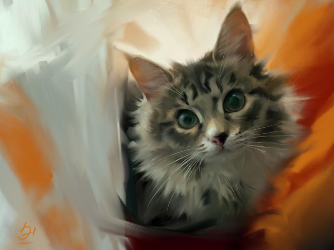 Erica Fox. Портрет Мисти.