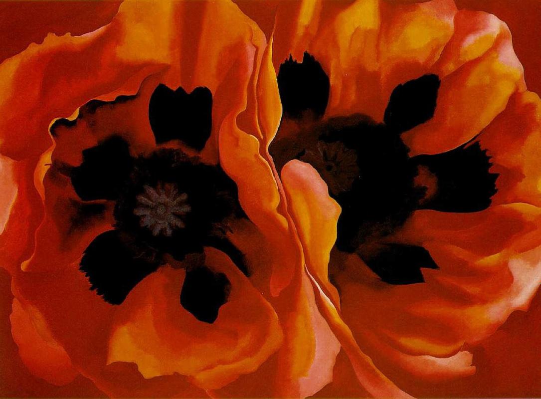 Georgia O'Keeffe. Oriental poppies