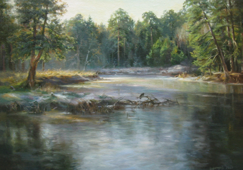 Sergey Vladimirovich Vorotilov. Frozen pond