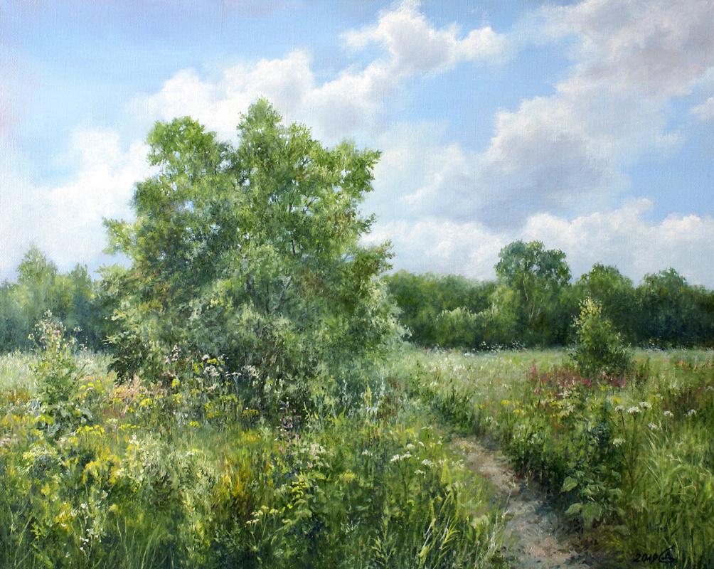 Сергей Владимирович Дорофеев. Meadow grass