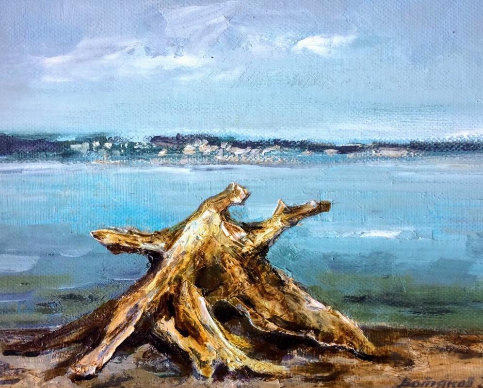 Edward Rudolfovich Votyakov. Wooden octopus. Near KamGes beach.