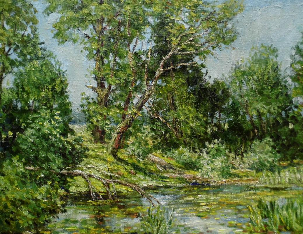 Victor Vladimirovich Kuryanov. Stalled pond
