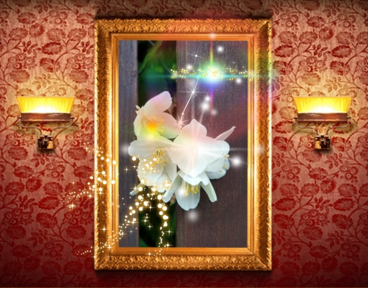 Natalya Garber. Shining mock-orange. Photoart for a wall that wants to become a window to the world