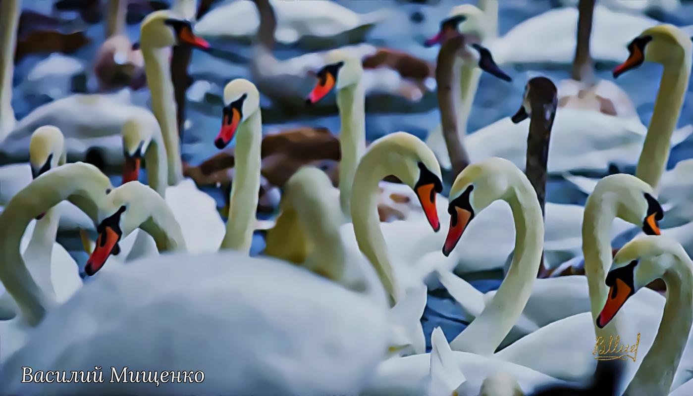 Vasiliy Mishchenko. Birds 028