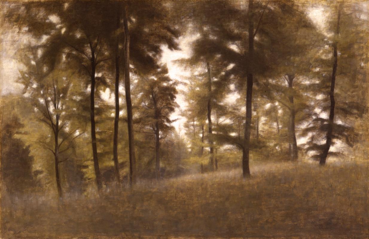 Вильгельм Хаммерсхёй. Молодой буковый лес, Фредериксварк