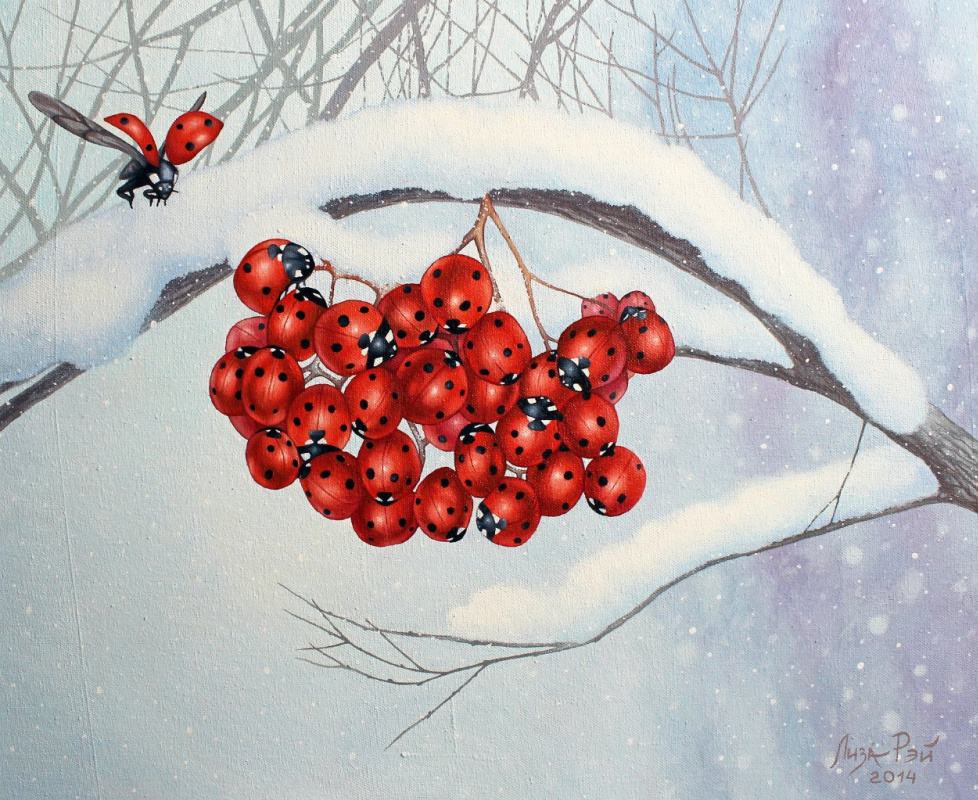 Lisa Ray. Winter mountain ash