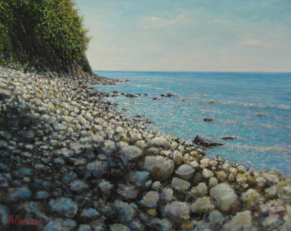 Andrew Lumez. Rocky shore
