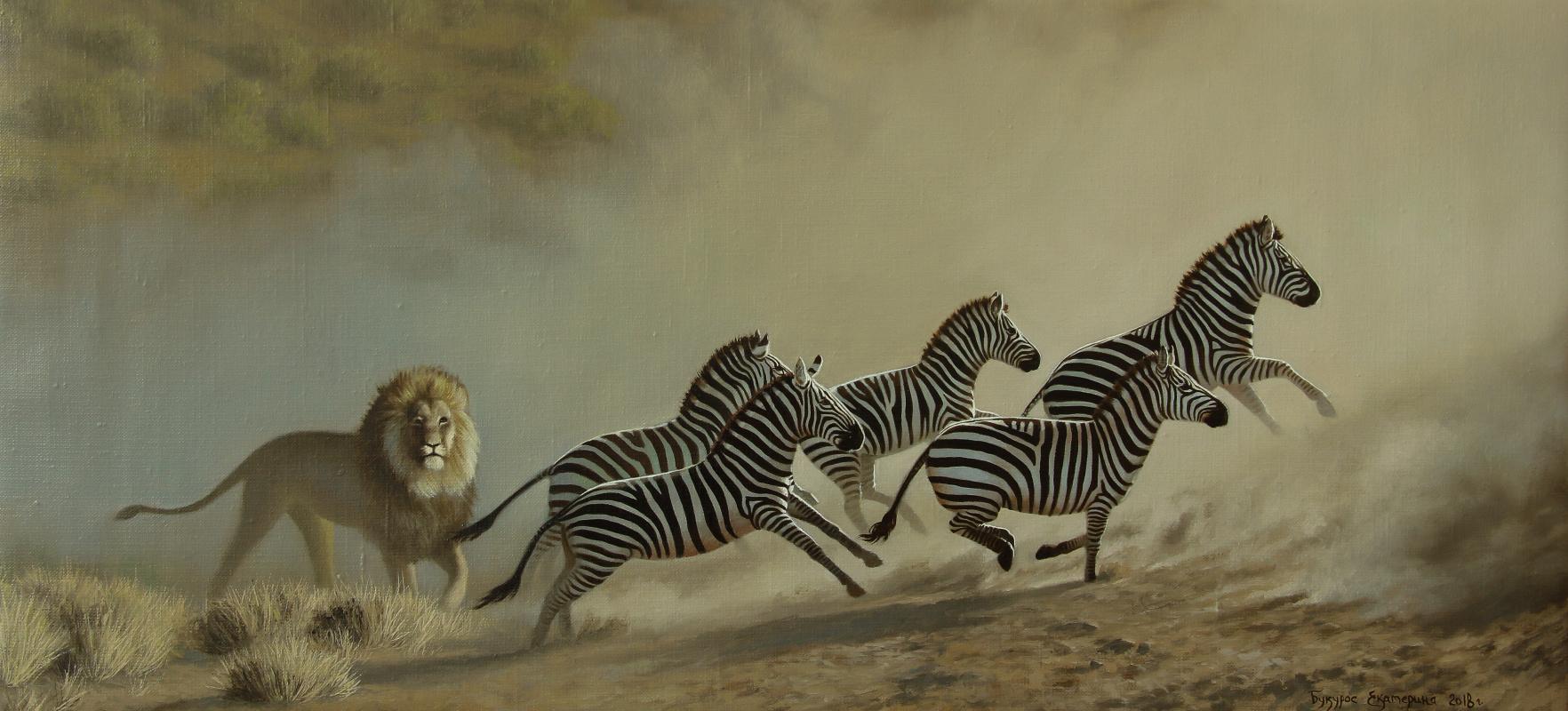 Katerina Bukuros. Лев и его зебры