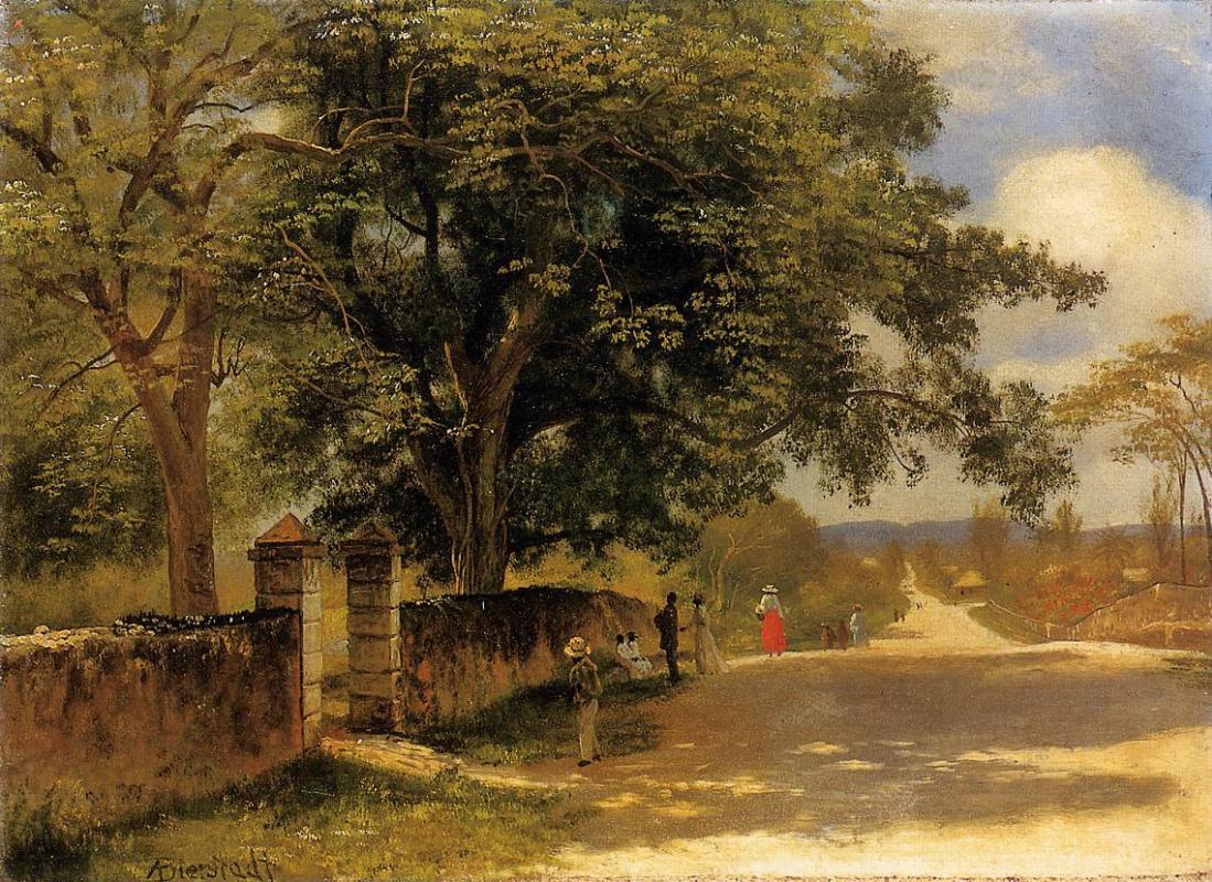 Альберт Бирштадт. Улица в Нассау