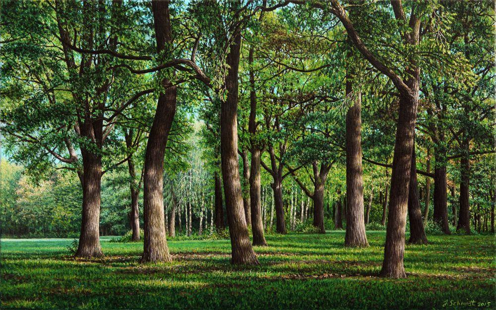 Юрген Шмидт. Oak grove. Augsburg