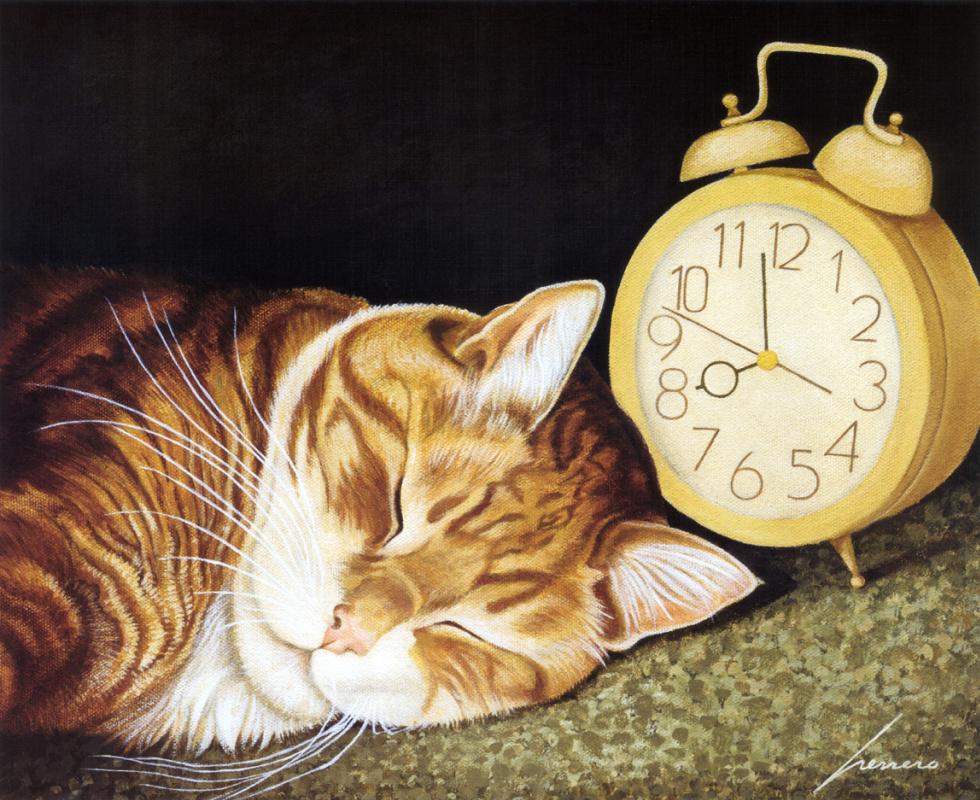 Мявкання котів на будильник скачати