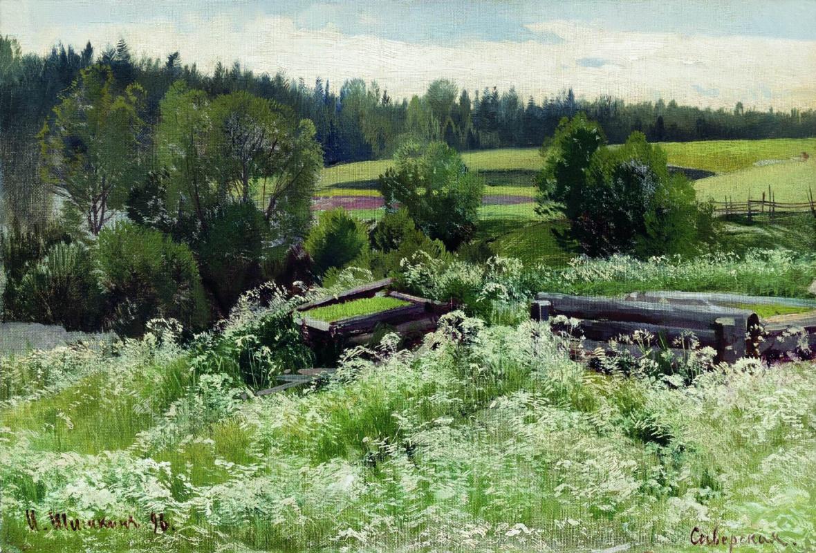 Ivan Shishkin. In Siverskiy