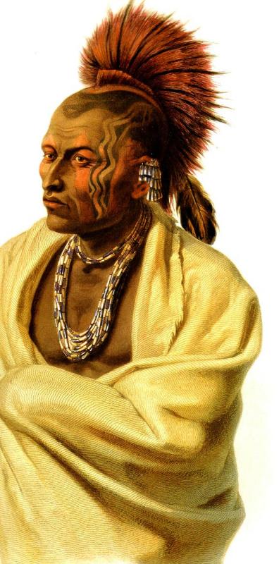 Карл Бодмер. Индеец