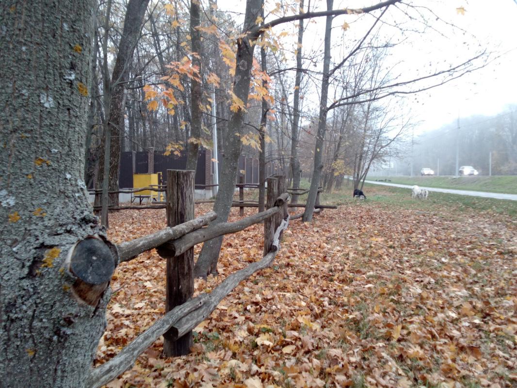 """Алексей Гришанков (Alegri). """"Misty Autumn Evening"""""""