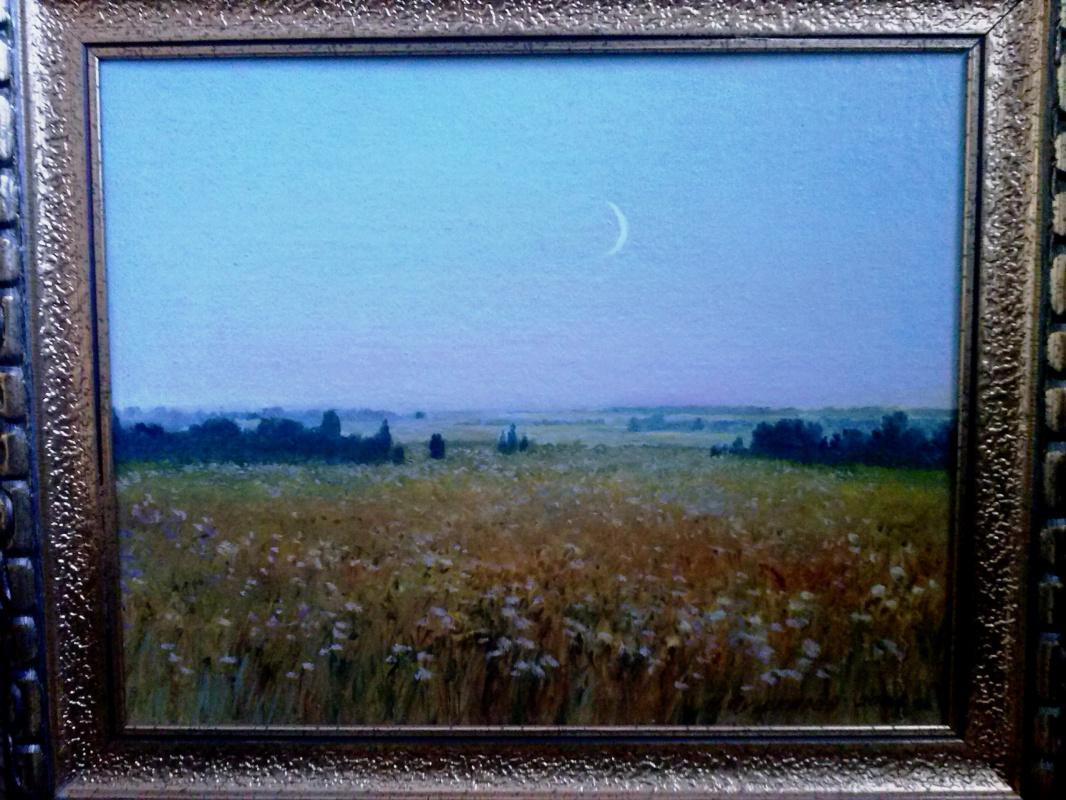 Nikolay Dmitrievich Pushkarev. New moon