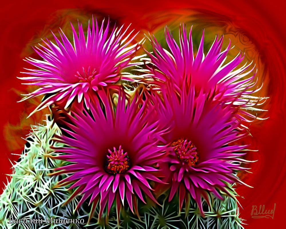 Vasiliy Mishchenko. Blooming cactus