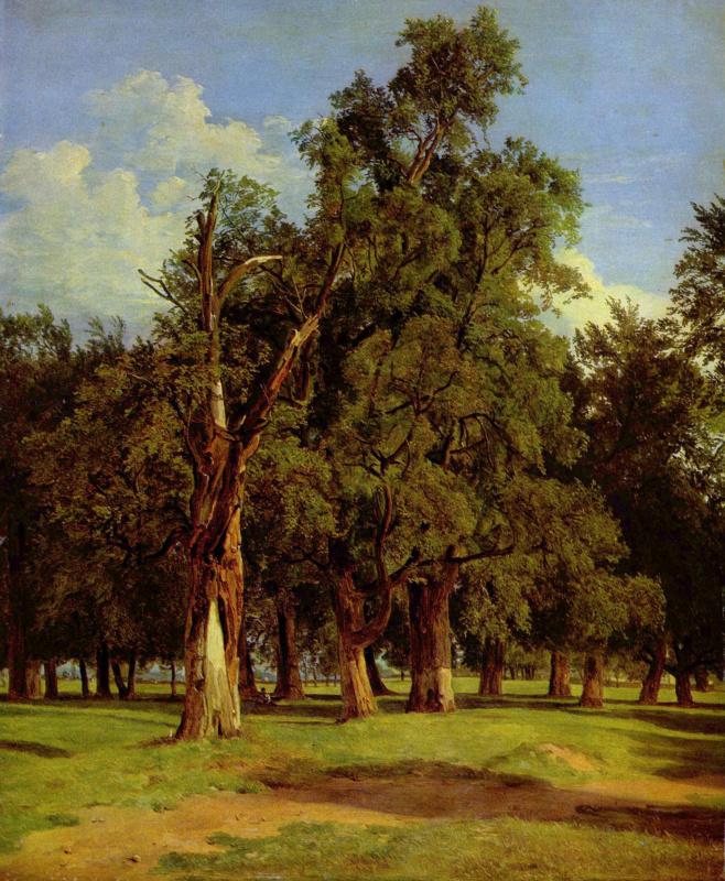 Ferdinand Georg Waldmuller. Old elms in Prater