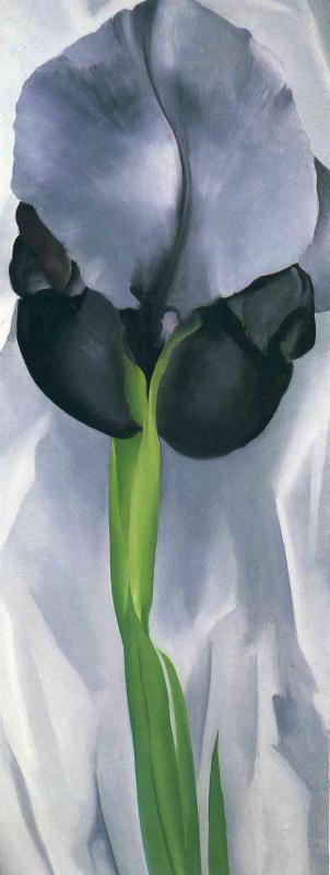 Джорджия О'Киф. Черный ирис VII
