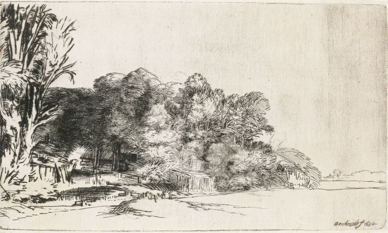 Рембрандт Харменс ван Рейн. Опушка леса