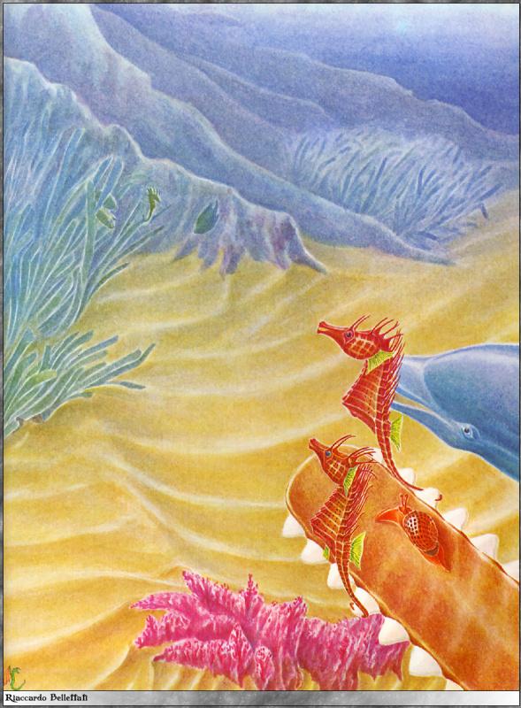 Риккардо Беллеттати. Подводный мир