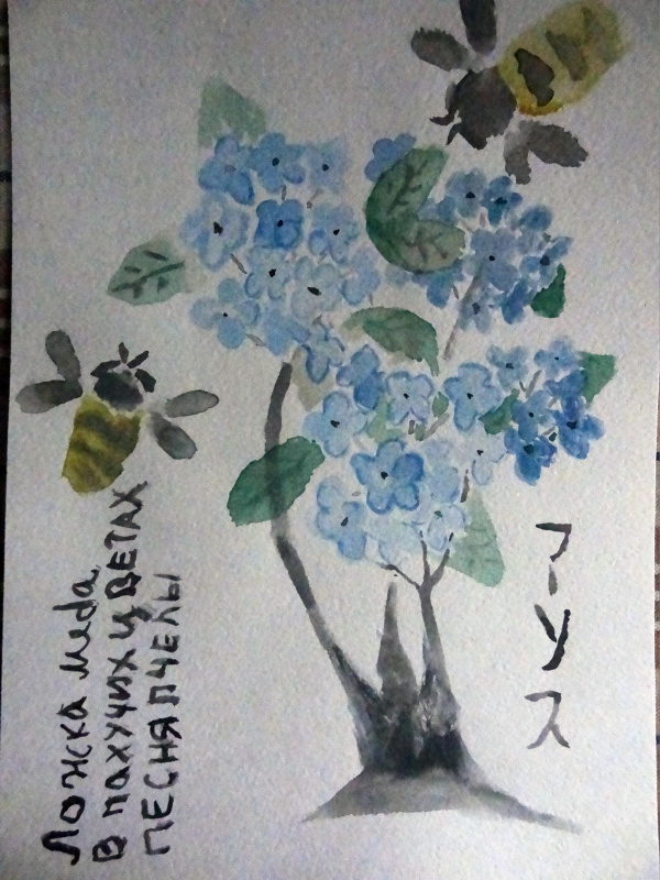 Alice Mikhaleva. Hydrangea Honey Haiga
