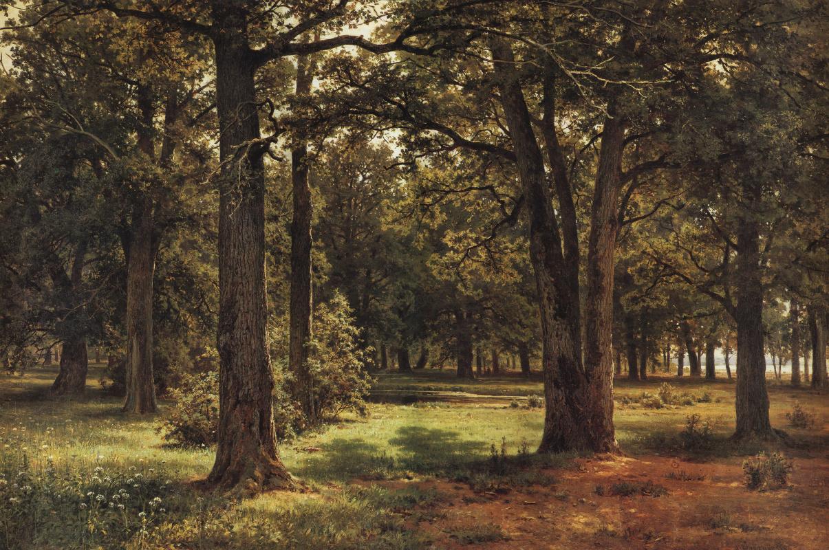Ivan Shishkin. In the protected oak grove of Peter the Great (in Sestroretsk)