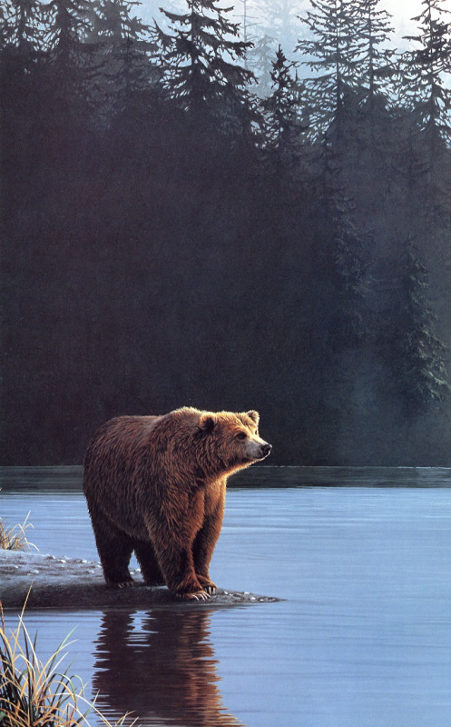 Рон Паркер. Медведь