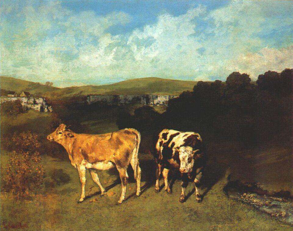 Гюстав Курбе. Белый бык и светлые телки