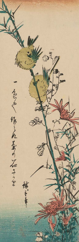 "Utagawa Hiroshige. Pair of Japanese white-eye and wild chrysanthemum. Series ""Birds and flowers"""