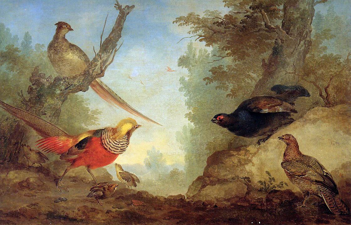 Aert Shouman. Pheasants