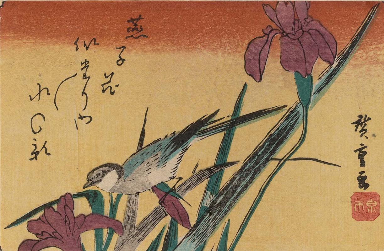 """Утагава Хиросигэ. Трясогузка и ирисы. Серия """"Птицы и цветы"""""""